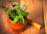 The Goodness of Fresh Herbs