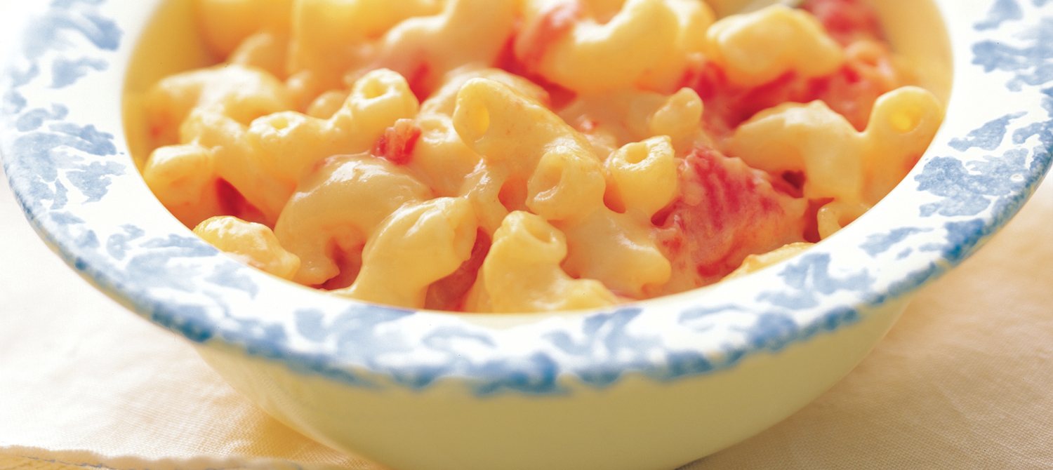 All-Time Favourite Cheese and Tomato Macaroni recipe | Dairy Goodness