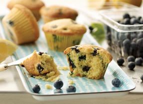 Fresh Blueberry Lemon Muffins