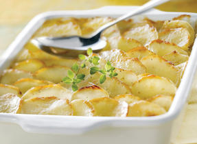 Golden Potato and Apple Gratin