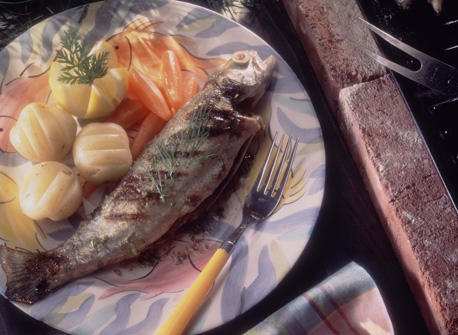 Grilled Trout with Lime and Fennel recipe | Dairy Goodness