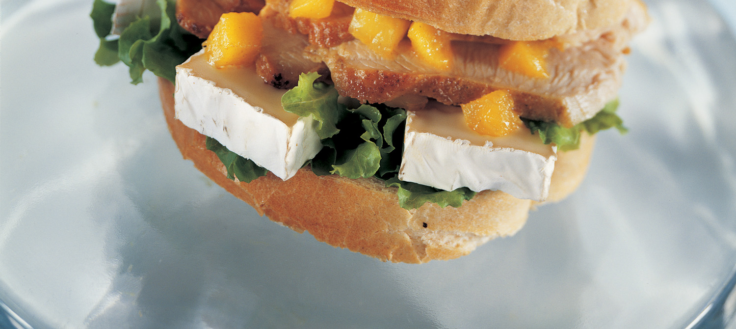 Grilled turkey and cheese sandwich