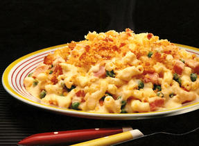 Macaroni Casserole with Double Cheese