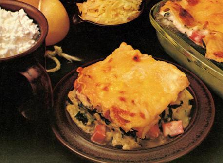 Lasagna Special Recipe